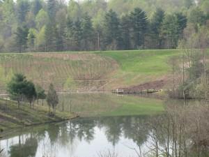 Lovell Creek 2