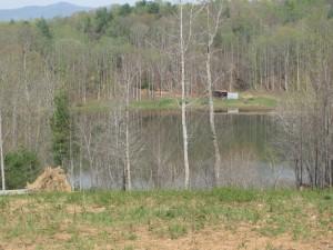 Lovell Creek 3