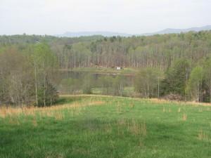 Lovell Creek 5